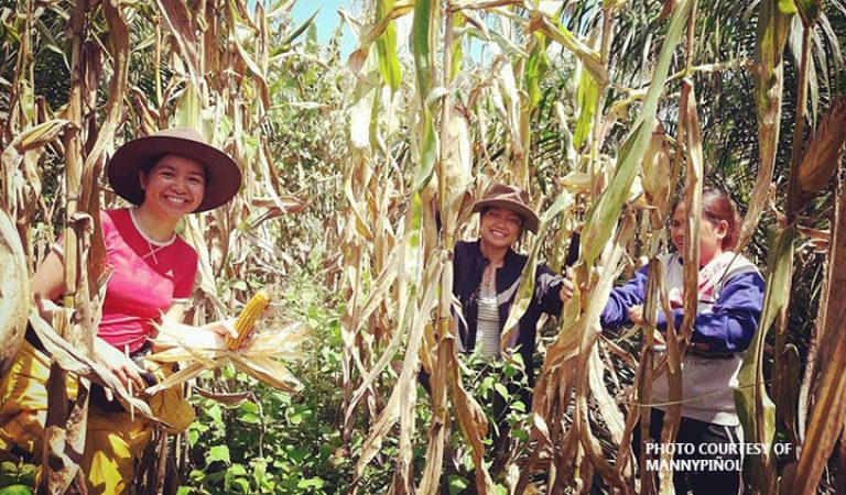 DAR looking at next generation of farmers