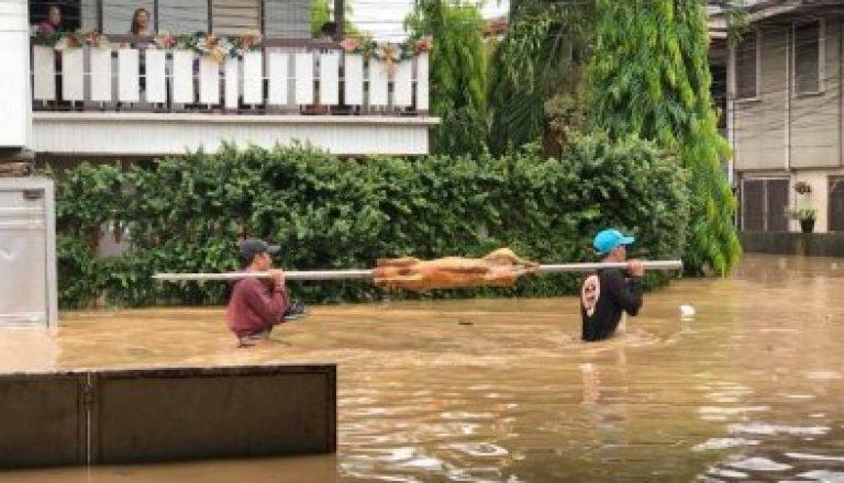 Lechoneros wade thru floodwater in Cagayan de Oro