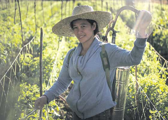 More Filipino Women Engaged in Agriculture