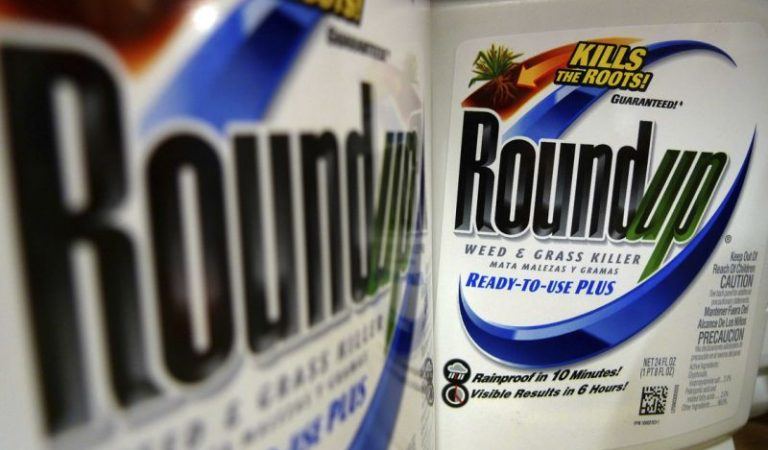 """The Effects of Roundup """"Glyphosate"""" to Filipino Farmers"""