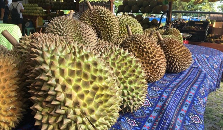 Agri Opportunity: Increasing Demand for Frozen Durian in China