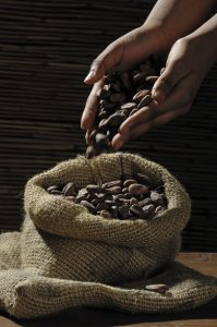 coffee growing in conflict areas