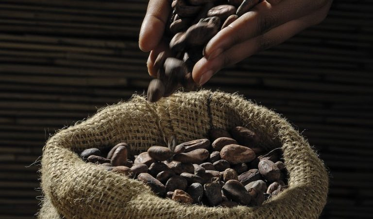 Coffee for Peace to Promote Coffee Growing in Conflict Areas