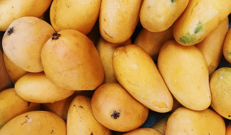 Japan to Purchase Excess Supply of Philippine Mangoes