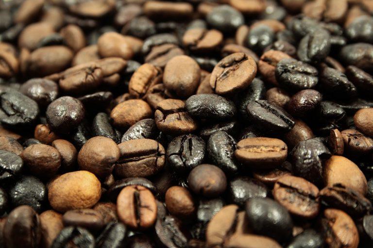 coffee industry in Mindanao