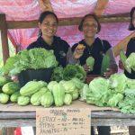 organic farming in camiguin