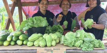 organic farming in camiguin