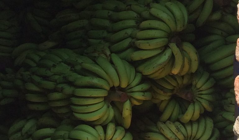 China Purchases More Philippine Bananas