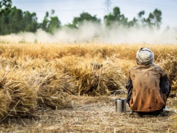current challenges in agri-sector