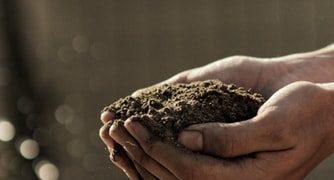 agronomic education