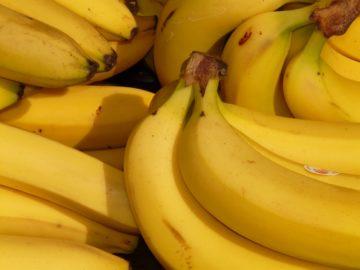 PHL urged Japan for zero tariff on Philippine bananas