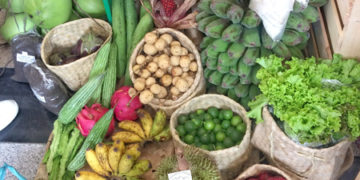 organic farming in iloilo