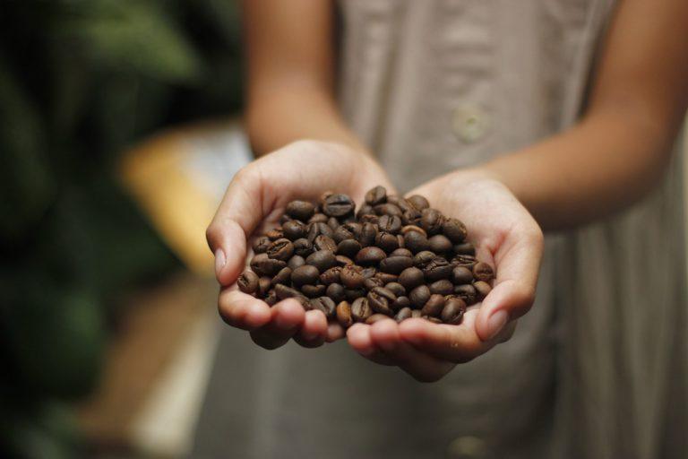 Bukidnon and Sagada coffee