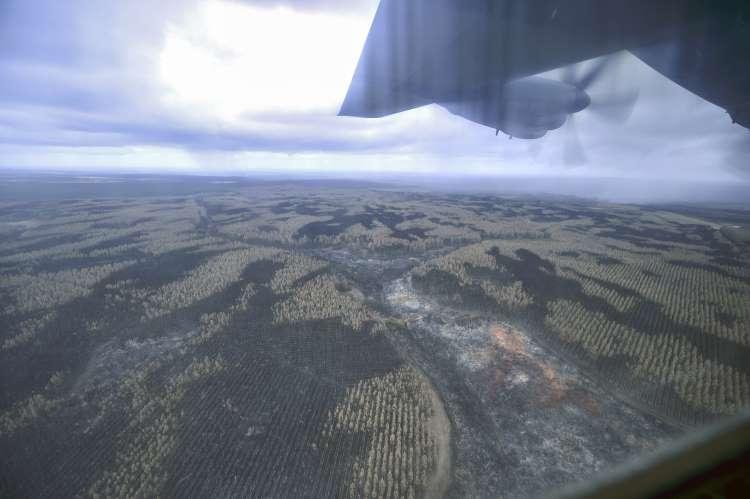 在某些受灾地区倾盆大雨使澳大利亚大雨倾盆