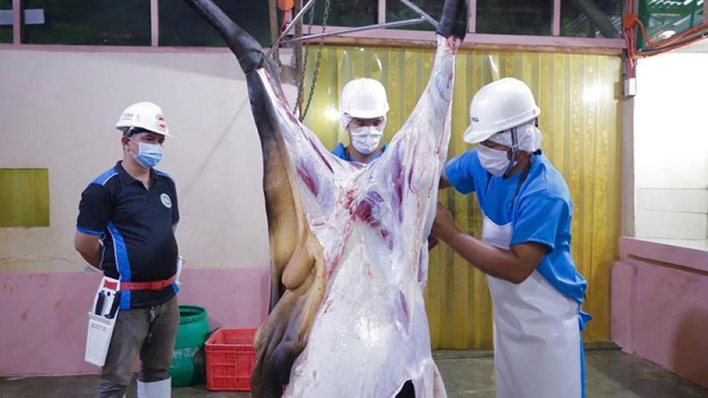 davao city's halal slaughterhouse