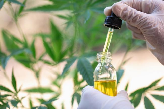 "How Will Ordinary Filipinos Benefit from the ""Medical Marijuana Law"""
