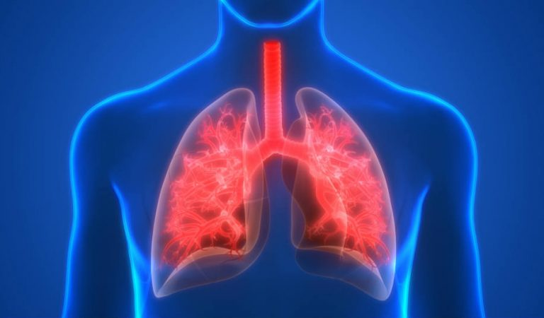 How to Protect and Take Care of Your Lung