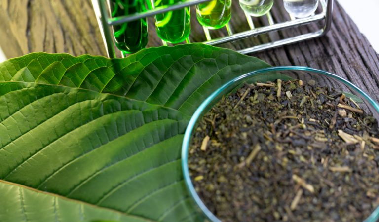 Kratom: The Amazing Benefits and Some Risks