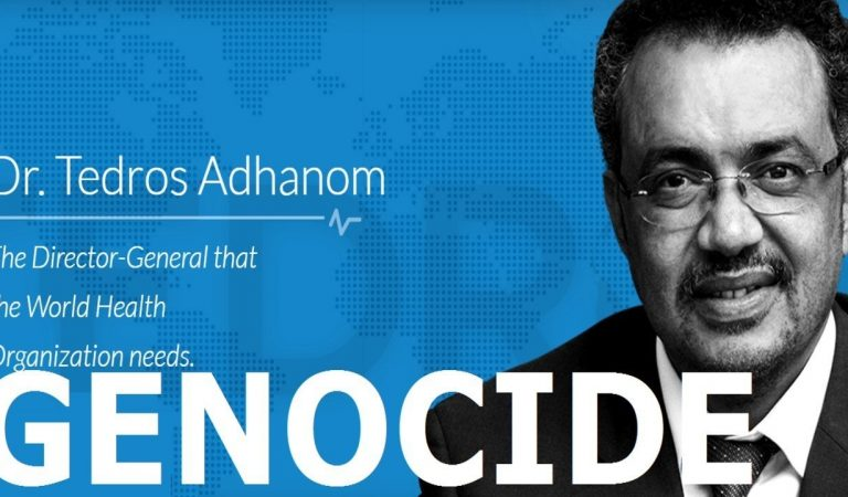 "Human Rights Violations of WHO Director Tedros Adhanom against the ""Amhara People"""